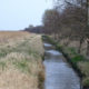Rewetted degraded fen peatland site